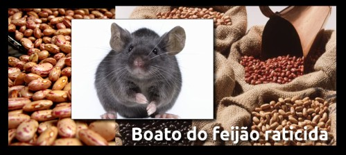 boato_feijao_raticida