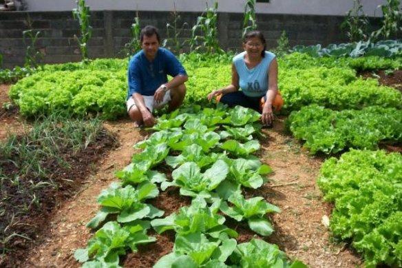 Hortas como a de São Miguel geram emprego e alimento de qualidade para a comunidade. (Foto: Divulgação)