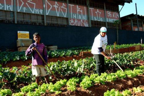 Projeto visa auxiliar comunidades em situação de vulnerabilidade social. (Foto: Divulgação)