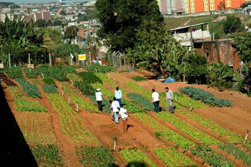 Missão da Cidades Sem Fome engloba ainda extinguir a pobreza e o desemprego. (Foto: Divulgação)