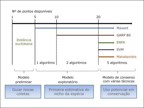 A estratégia de modelagem de nicho ecológico depende do número de pontos de ocorrência disponíveis para cada espécie. Com menos de 5 pontos gera-se um modelo inicial com o objetivo de guiar novas coletas. Entre 5 e 19 pontos os modelos ainda são considerados exploratórios, mas servem como uma estimativa preliminar do nicho da espécie, sendo gerados com um ou dois algoritmos. Modelos gerados a partir de 20 pontos permitem a inclusão de todos os algoritmos, tendendo a ser mais robustos.