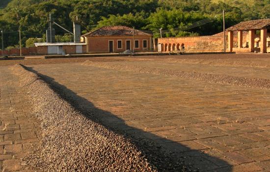 Foto: Liana John (terreiro de secagem de café, em Minas Gerais)