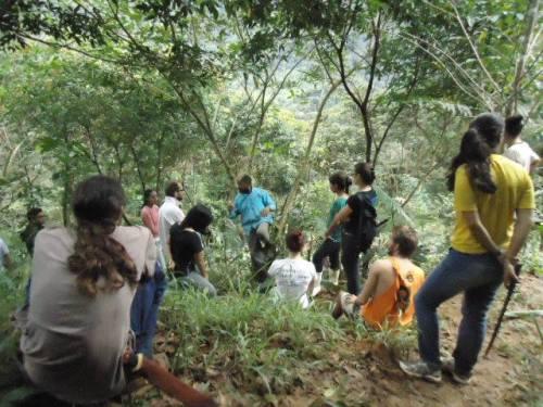 Vivência Agroflorestal' do Sitio São José, em 2010. Foto: Arquivo Zé Ferreira