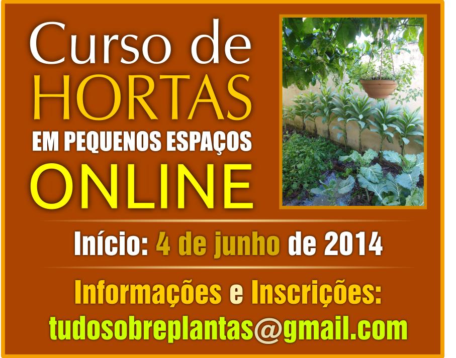 curso_horta_peq_esp_4_junho