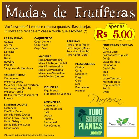 rifa_frutiferas_flora_monte_claro_tsp