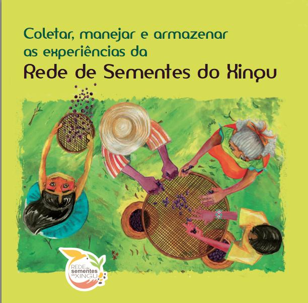 Coletar, manejar e armazenar as experiências da Rede de Sementes do Xingu