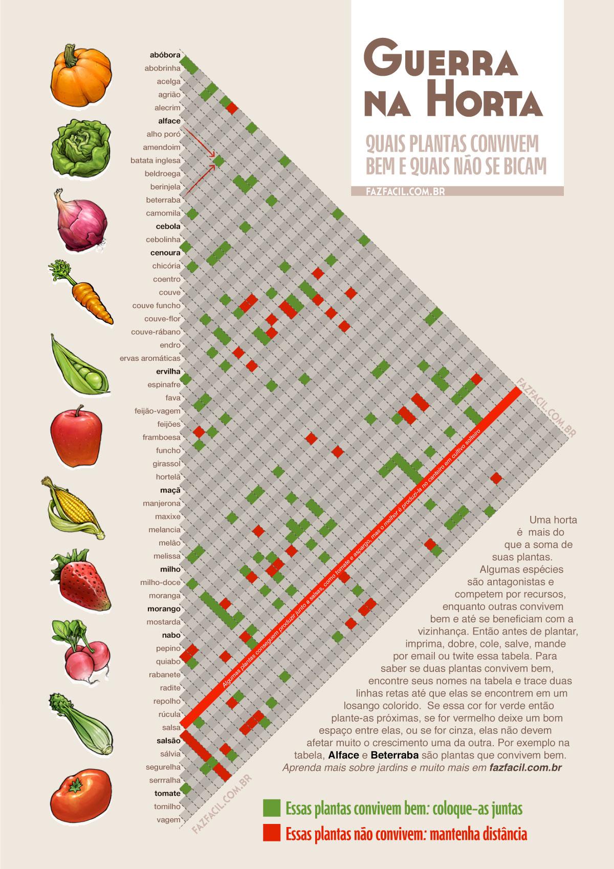 Plantas companheiras tabela para horta caseira e for Lista de plantas de sombra