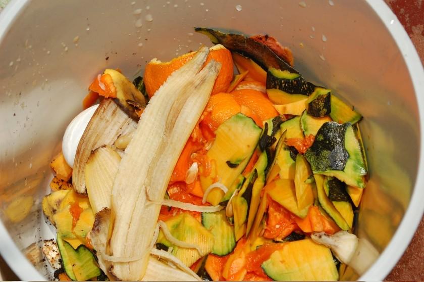 Lixeirinha com cascas e restos orgânicos