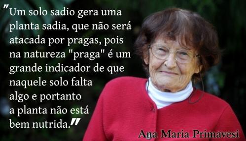 solos_ana_primavesi