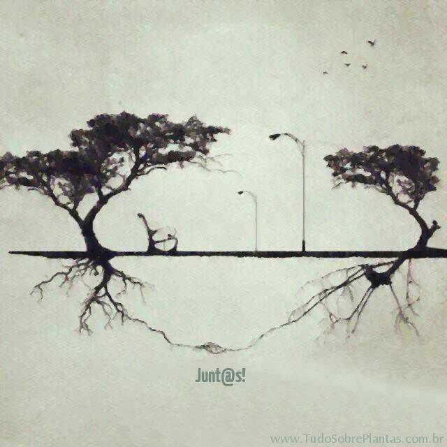 junt@s_trees